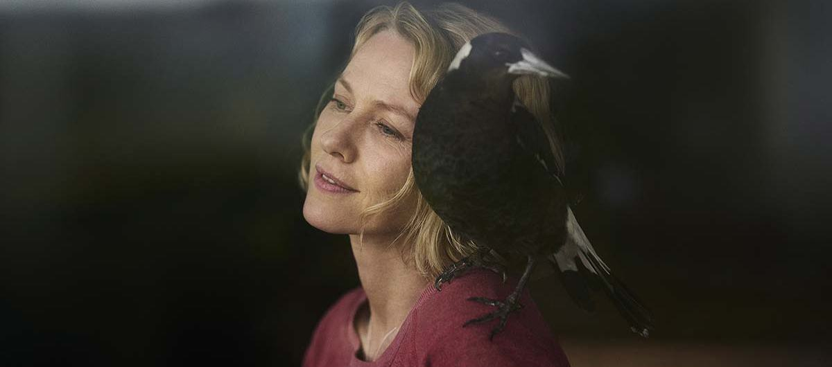 Penguin bloom movie review, naomi watts header